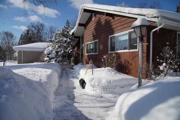 February snow, St. Paul, MN
